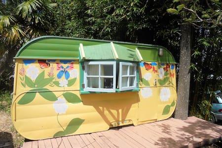 Bamboo Caravan - Kohukohu