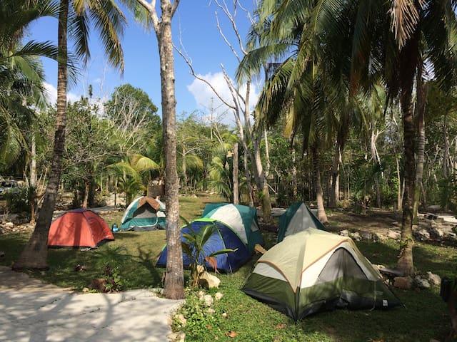 Camping, lagoon and adventures on mayan jungle. - Felipe Carrillo Puerto - 산장