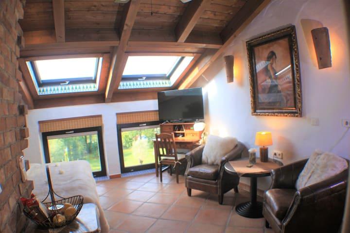 Hazienda Studio-Apartment 25 qm
