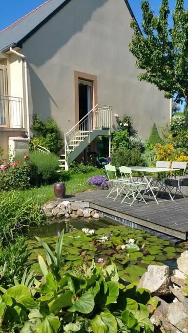 Jardin - Terrasse + bassin