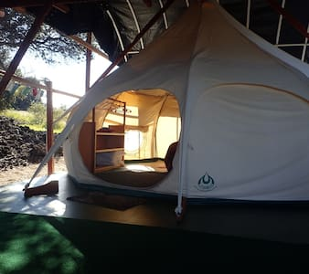 Ecolodge, Cozy Lotus experience with ocean view
