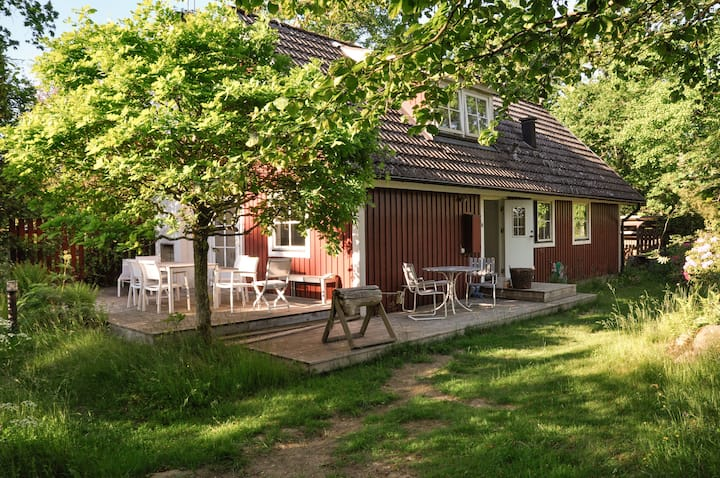 Cozy cottage - 5 min from Skäralid national park