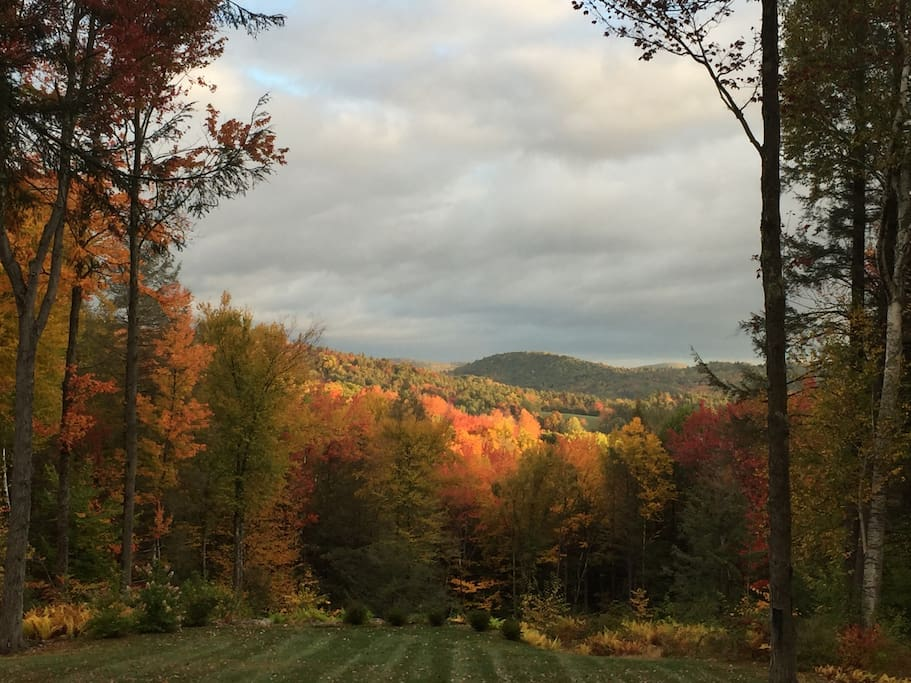 Fall View from the Deck
