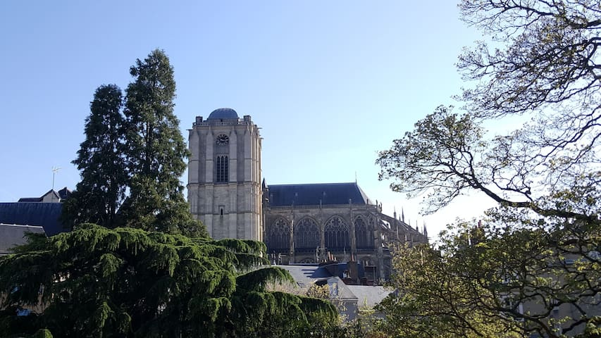 Vieux MANS, Cité Plantagenêt, Pilier rouge