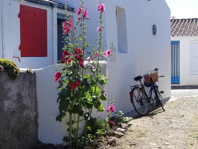 Maison de pêcheur au coeur de Saint Sauveur