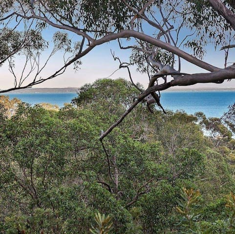 540 Banksia Kingfisher Bay Resort Fraser Island