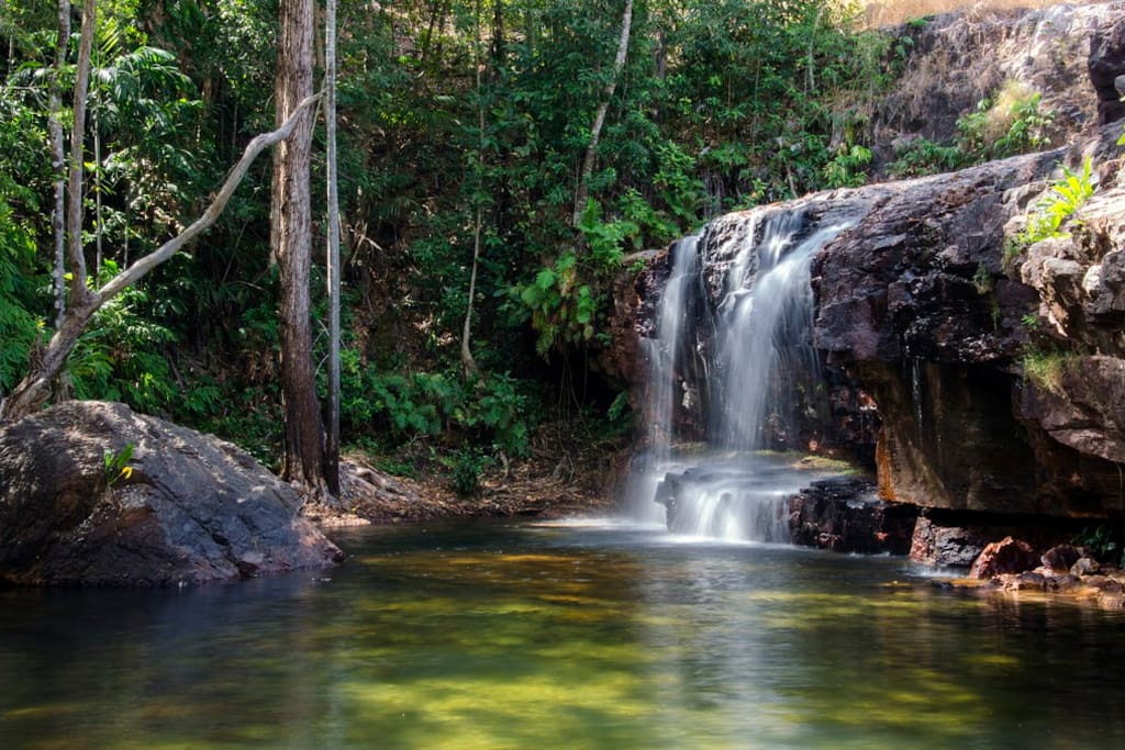 The Cascades, directly across the road from the holiday house.  Shady rainforest walk with pristine swimming holes year round.