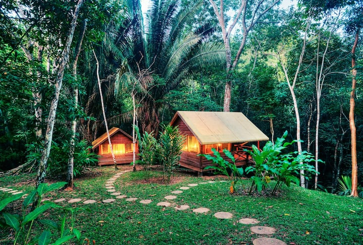 Macal River Jungle Camp B - Wildly Civilized