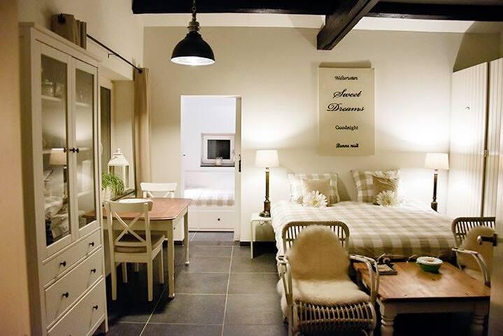 Grote kamer met tweepersoonsbed, tv, keukentje en eethoek.