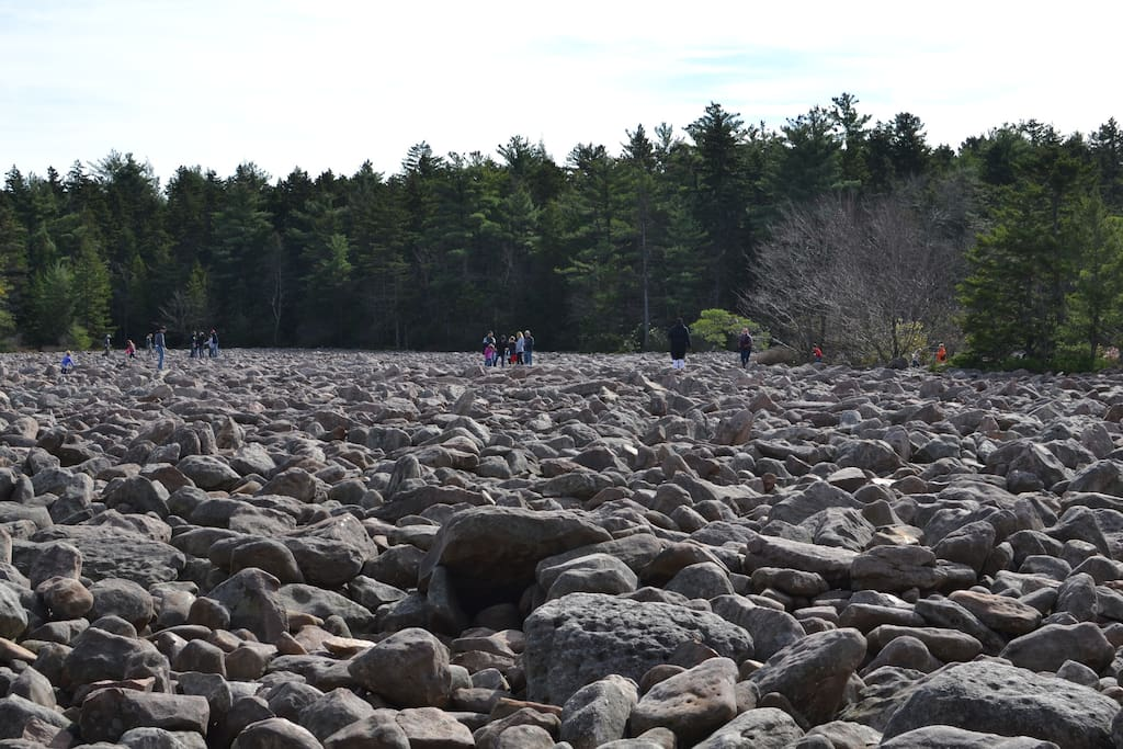The boulder field at Hickory Run State Park.