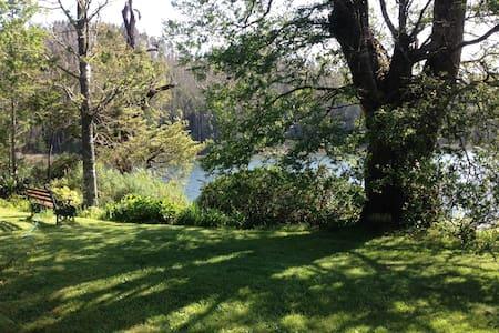 Descanso a orillas del río - Valdivia - Bed & Breakfast