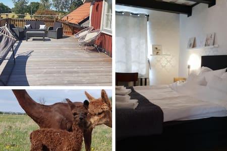 Balcony, alpacas, 1,5h Stockholm, beds made