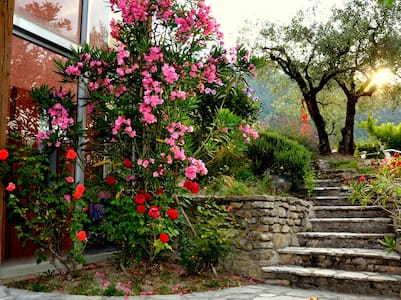 Beautiful sunny studio in Provence - House