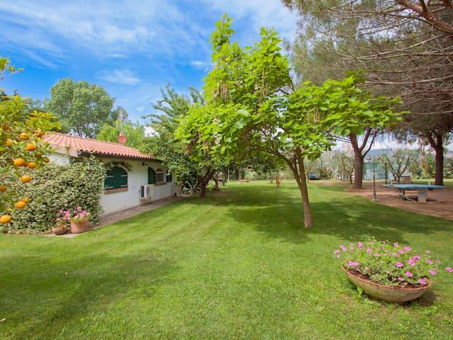 2-room apartment 30 m² Chiusa Grande in Baratti
