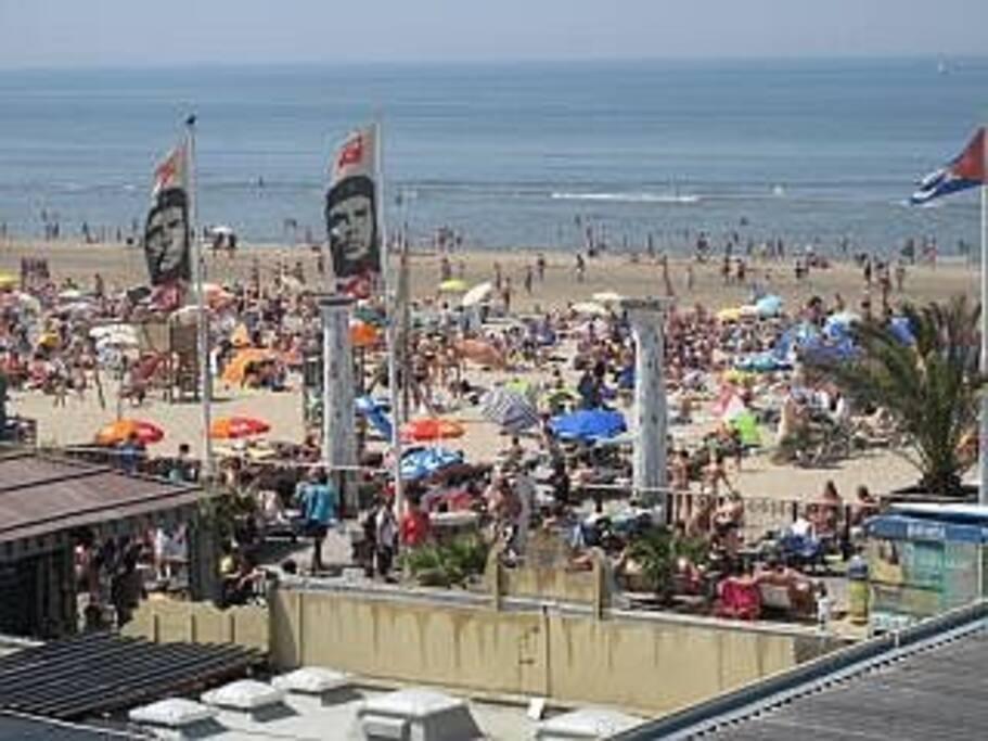 Mangos beach bar: place to be