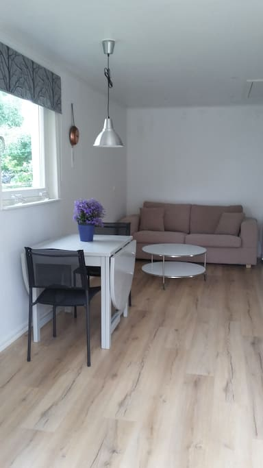 The sittingarea and the kitchen are in the same room.