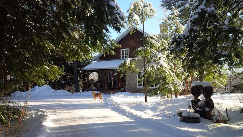 Pine Ridge Home