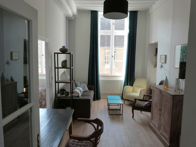 Exceptional, calm apartment in the heart of Beaune