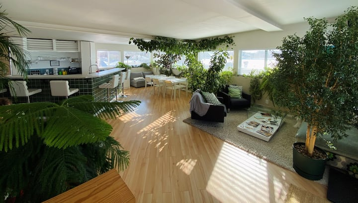 Stunning rooftop Apt. W/panoramic view  & terrace.