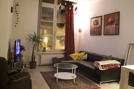 Full furnished Apartment in historic centre Leiden - Leiden