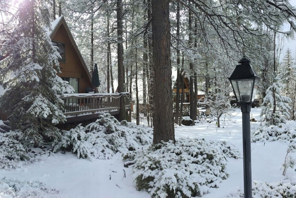 The cabin in December