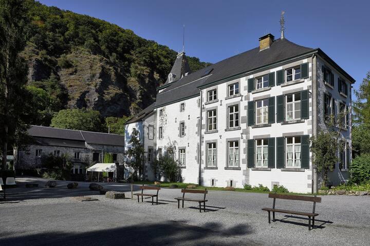 "Apartment in the beautiful castle ""Château de Dieupart"""