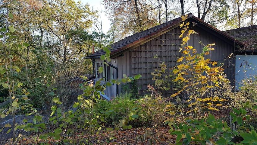 Ferienhaus 56 in Pilgramsberg