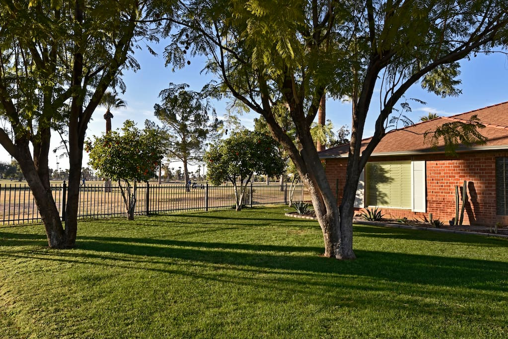 Street view of the front yard with the Encanto 8th Fairway in the background.