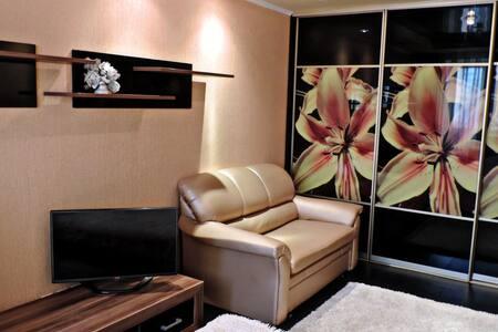 1-комнатная квартира на сутки - Homieĺ