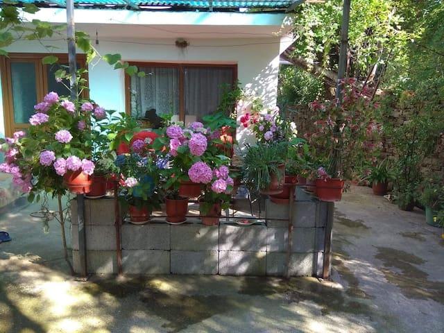 Deliu Family Tourism