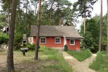 Ferienhaus in der Dübener Heide