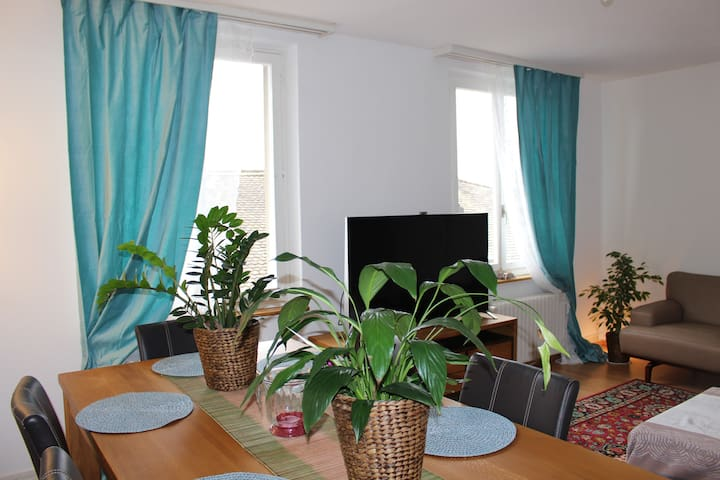 Central best private room near university ETH - Curych - Byt