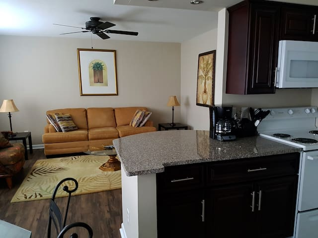 2 Corporate or Pleasure! Wifi, tv, close to BEACH! - Norfolk - Apartamento