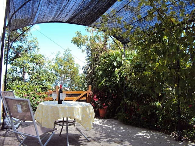 New garden apartment adjoining traditional Quinta - Madeira - Pis