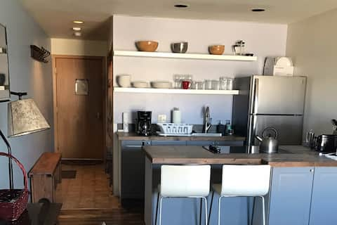Newly renovated studio in downtown Frisco Colorado!