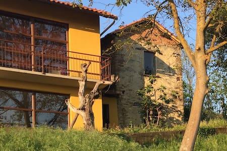 Grote moderne villa in Piemonte - Vesime - Villa