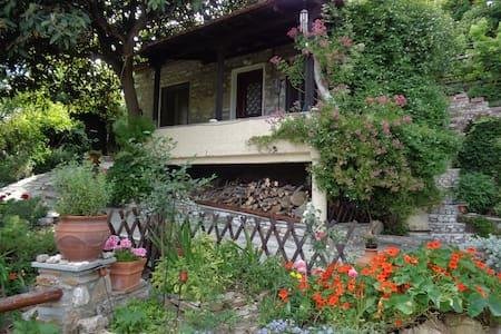 mountain-village 2 bedroom house - Volos