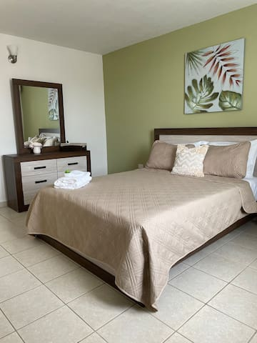 Master bedroom with queen bed, bathroom, walking closet and air conditioning
