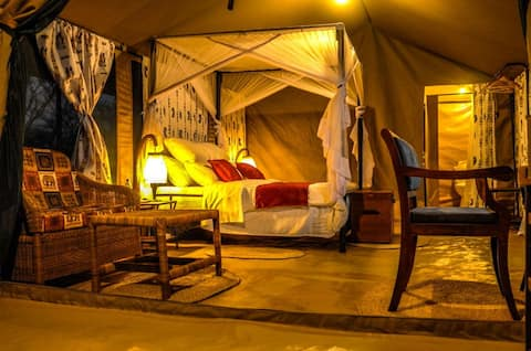Luxury, yet Affordable Stay in Serengeti