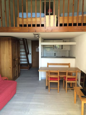 Studio nickel pour 4 personnes !! - Taninges - Appartement