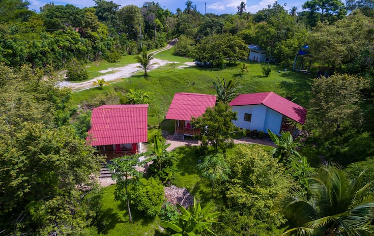 Three Jungle Bungalows close to a secluded beach.