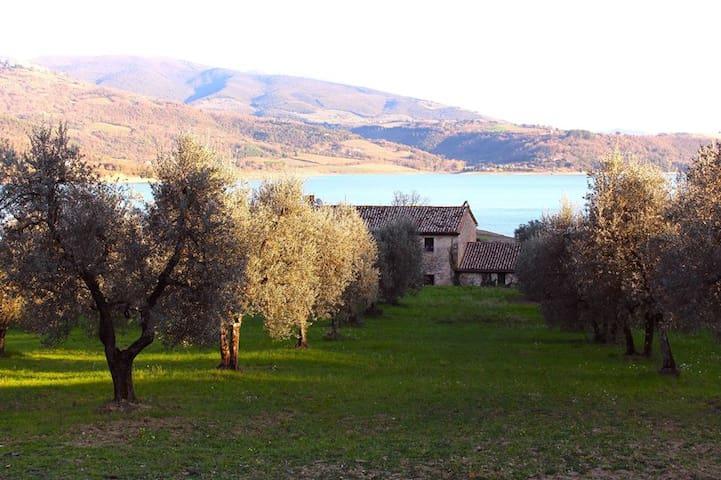 Rustic lakeside villa - Corbara