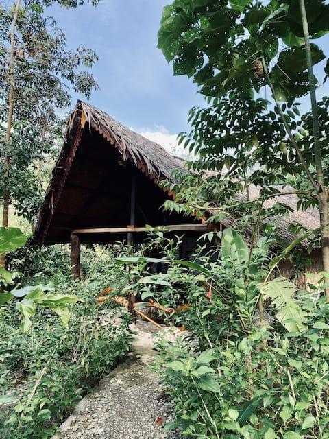 Deluxe cabin in jungle huts