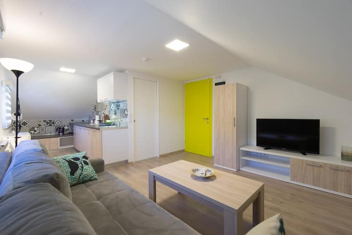 Elegant and comfortable loft studio apartment