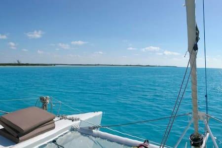Vintage lagoon 55ft catamaran - George Town - Barco