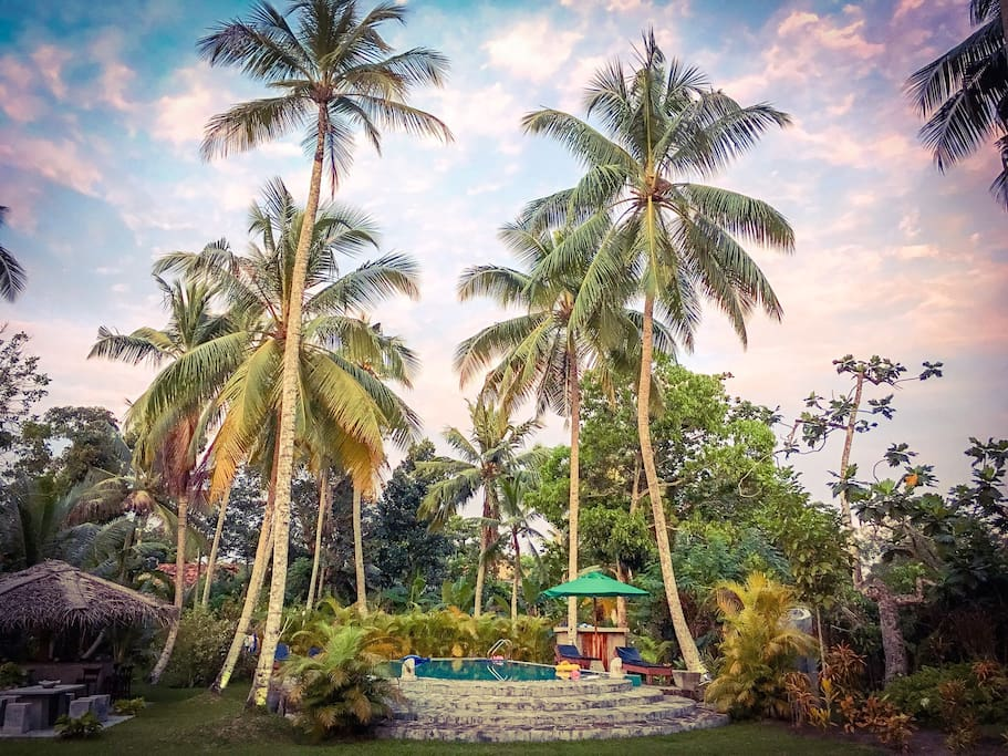 Stunning garden and pool area..the ultimate tropical oasis