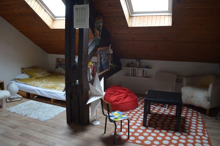25m² au centre historique de Rennes - Rennes - Appartement