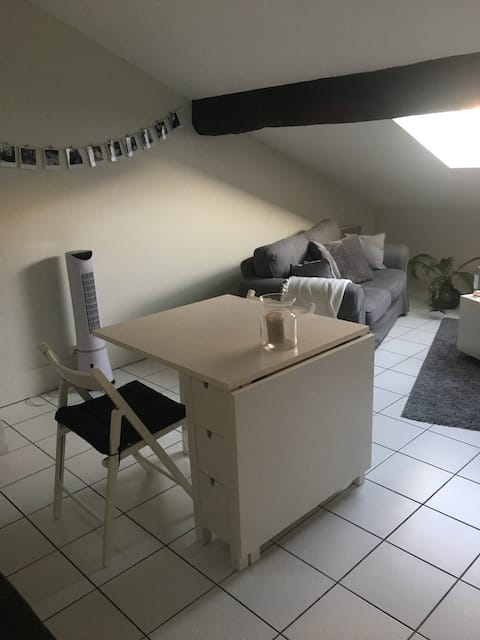 Studio au coeur du centre ville de Grenoble