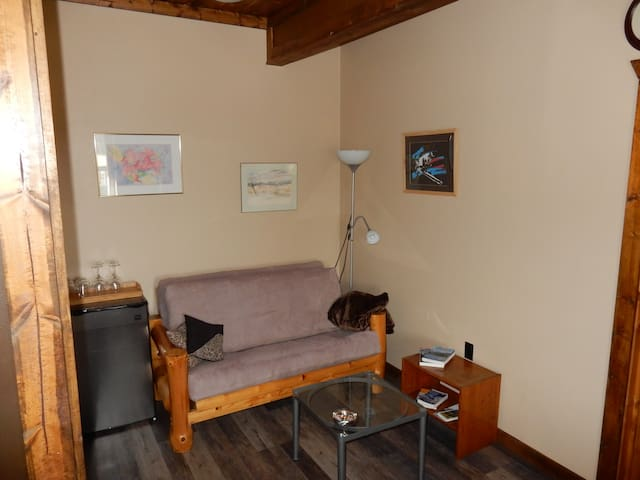 Sitting room with double futon, refrigerator, microwave, coffee maker, Netflix