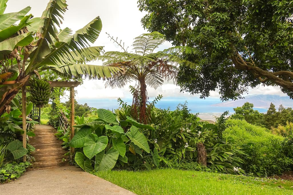 View from of West Maui from Kula Jasmine
